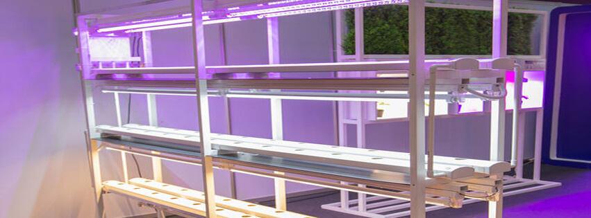 Vertical Hydroponic System