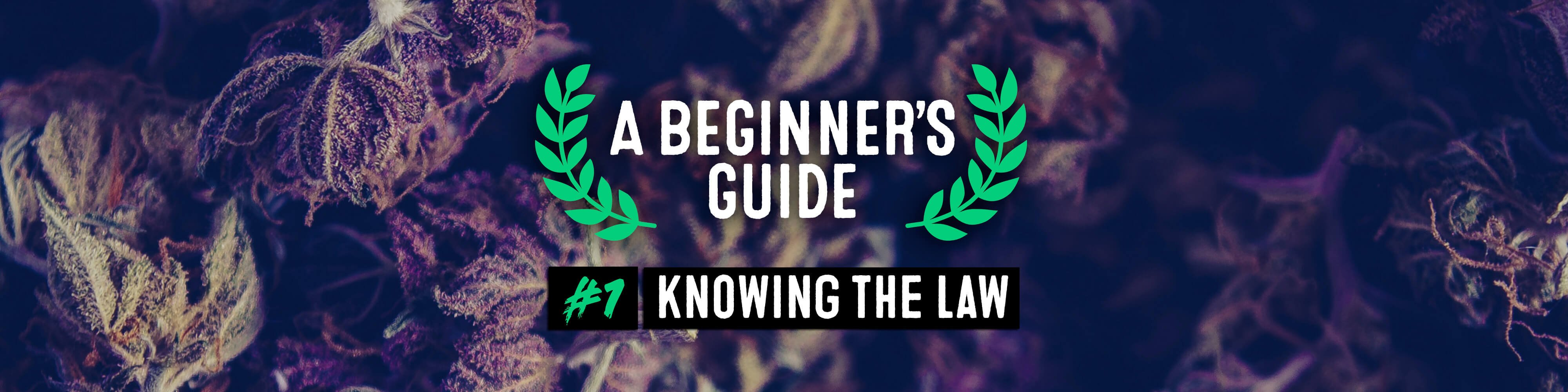 A BEGINNERS GUIDE. EPISODE 1: KNOWING THE LAW