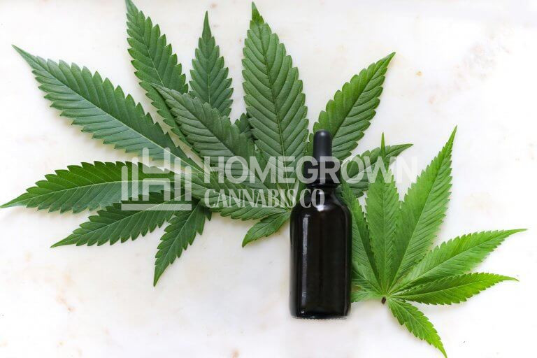 What Are The Medical Benefits Of CBD