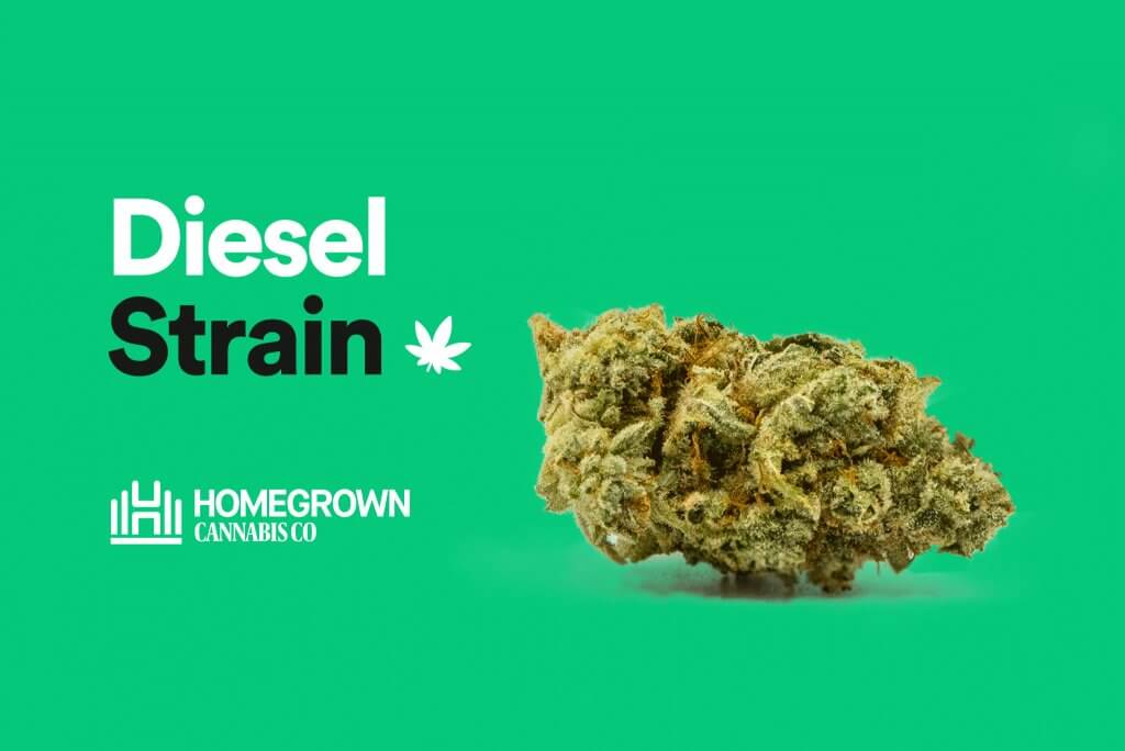 Diesel Strain