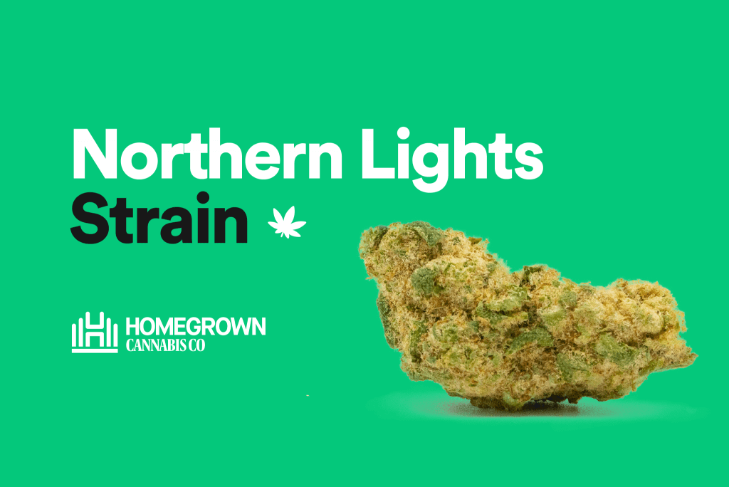 Northern Lights Strain