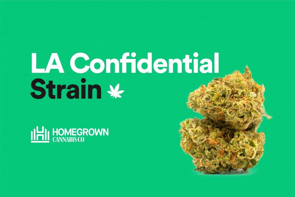 LA Confidential Strain