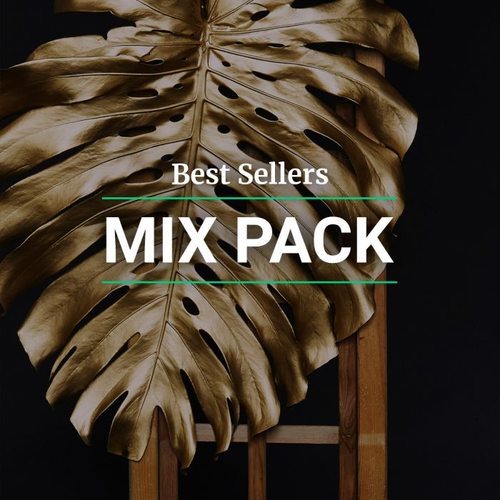 Best Sellers Mix pack